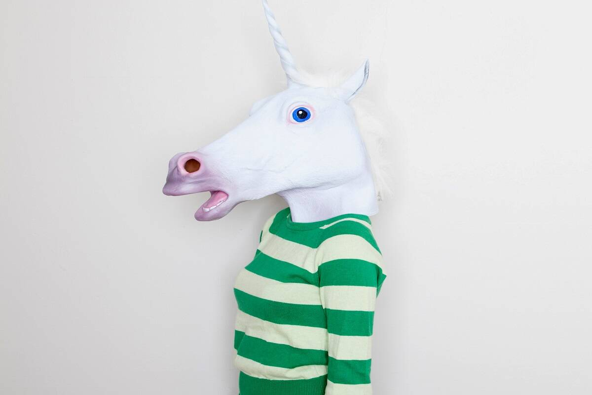 Making of a unicorn: What all it takes to build a billion dollar startup company