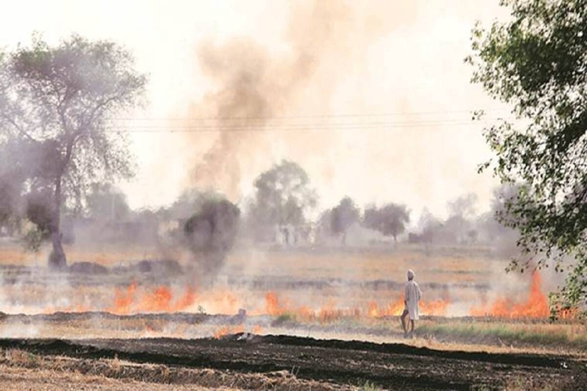 To curb stubble burning, pay attention to EPCA on making straw management machines affordable