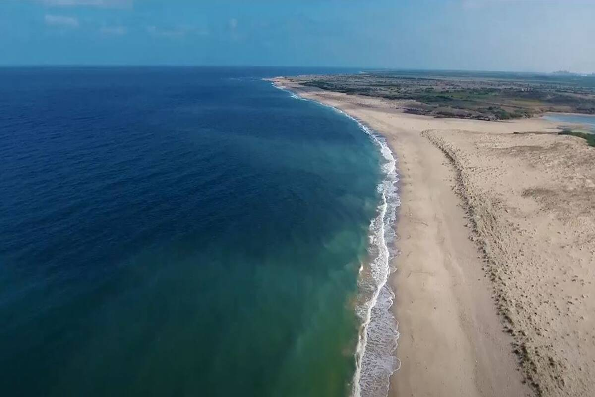Wow! India becomes first country to get Blue Flag Certification for 8 beaches in a single attempt; details