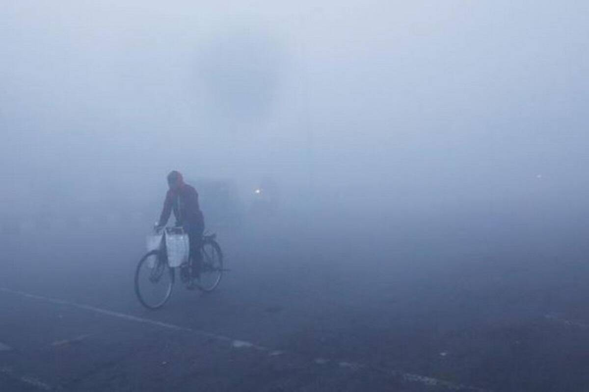Delhi braces for cold wave in run-up to New Year