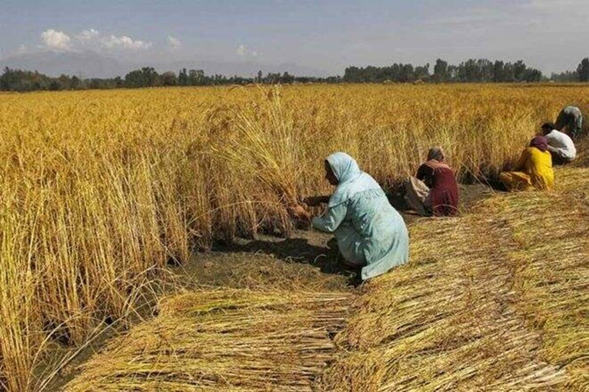 Rs 18k crore given to 9 crore farmers under PM-Kisan