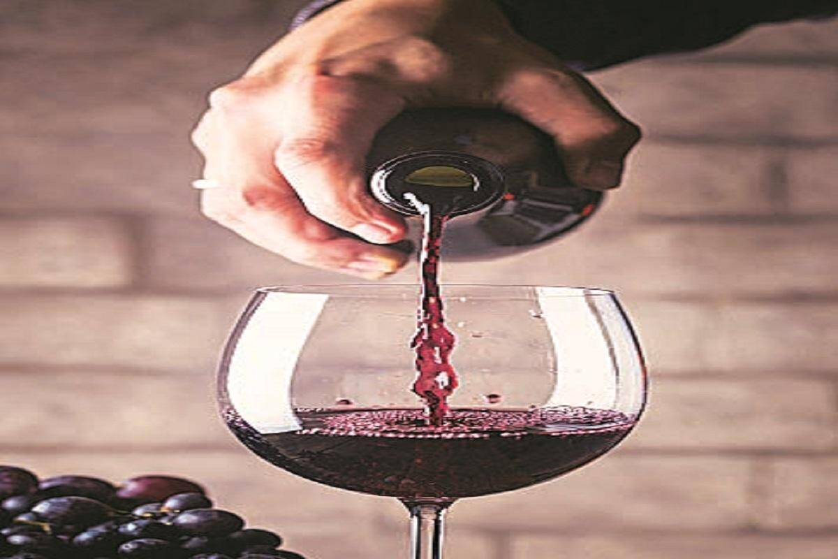 Wine season: You can raise a toast and even ferment your own in the kitchen!