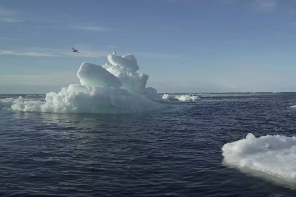 A cold draft? Arctic policy needs more global orientation