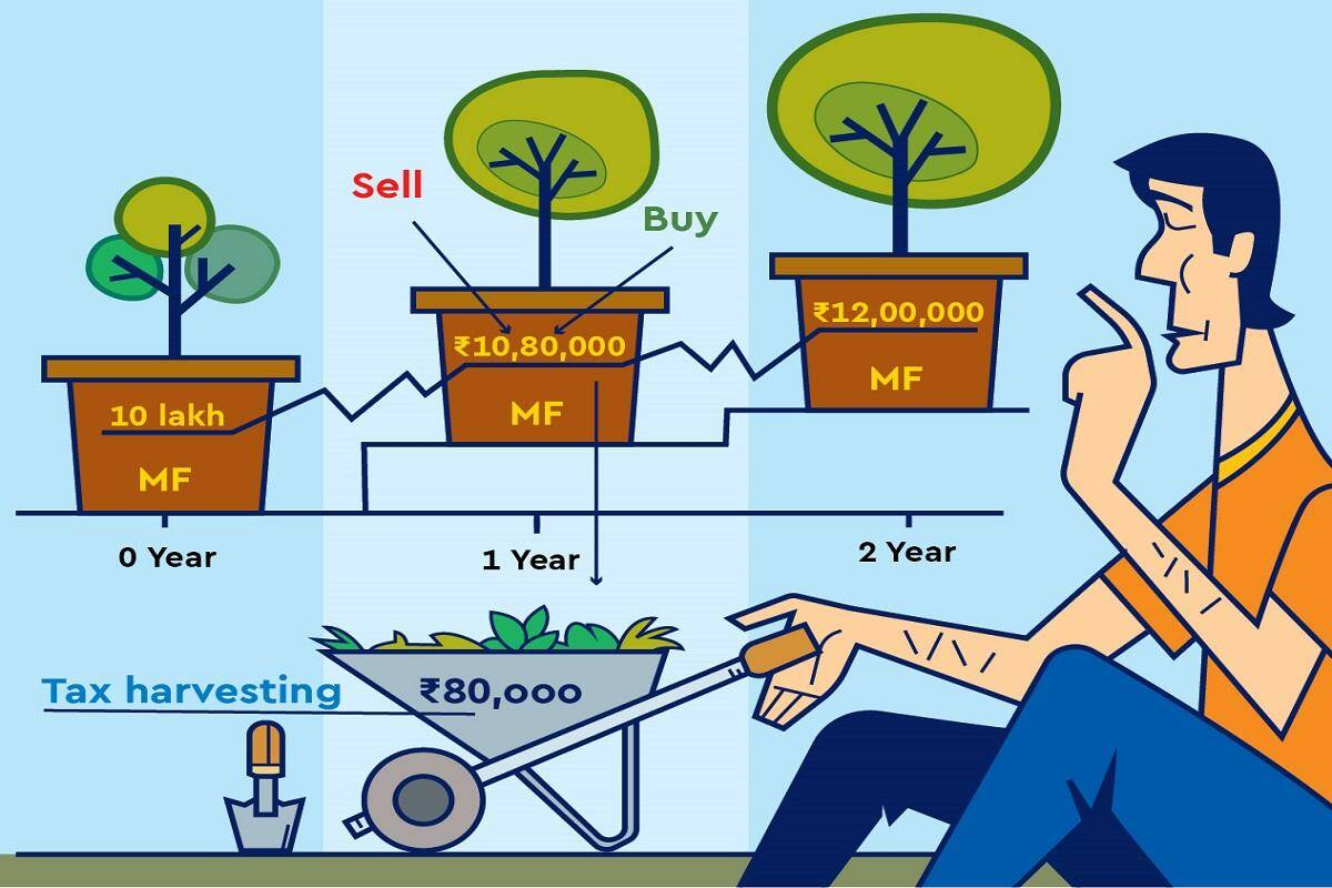 Smart Investing: How to use equity rally for tax harvesting