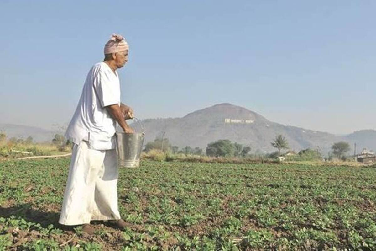 Covid spread in rural India: Seed manufacturers don't see drop in sales