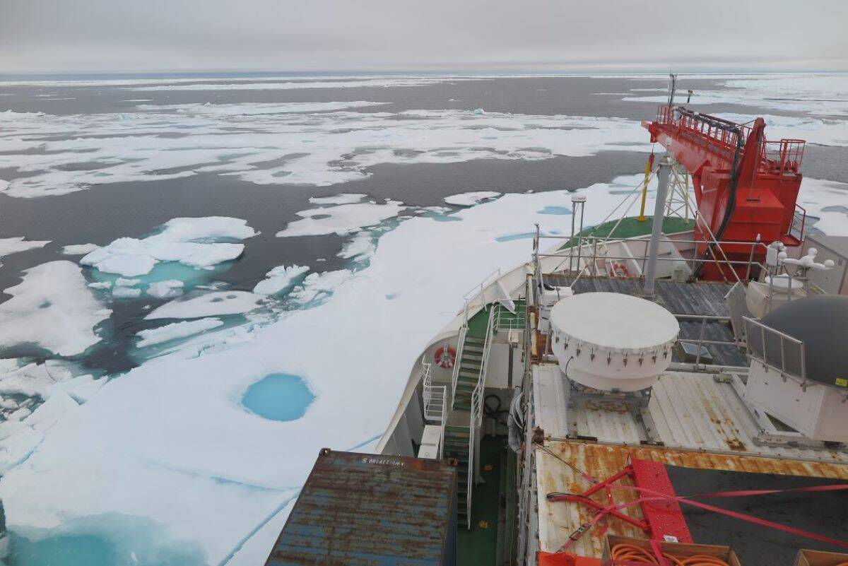 Global warming: Arctic's 'Last Ice Area' shows signs of melting much earlier than anticipated; Check details here