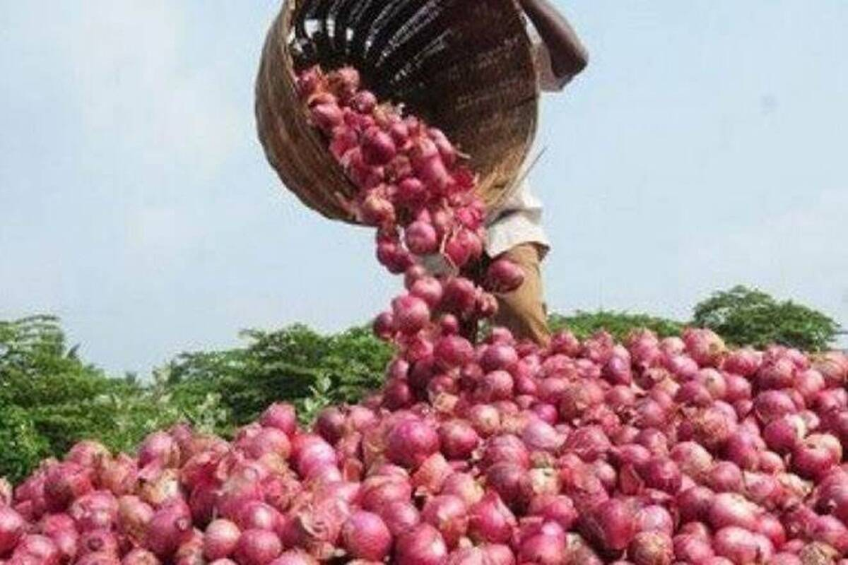 Japan, US object to India's frequent bans on onion exports